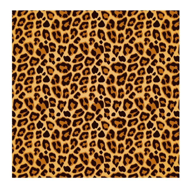 Fahrradfolie Leopard Muster - Kategorie Shop