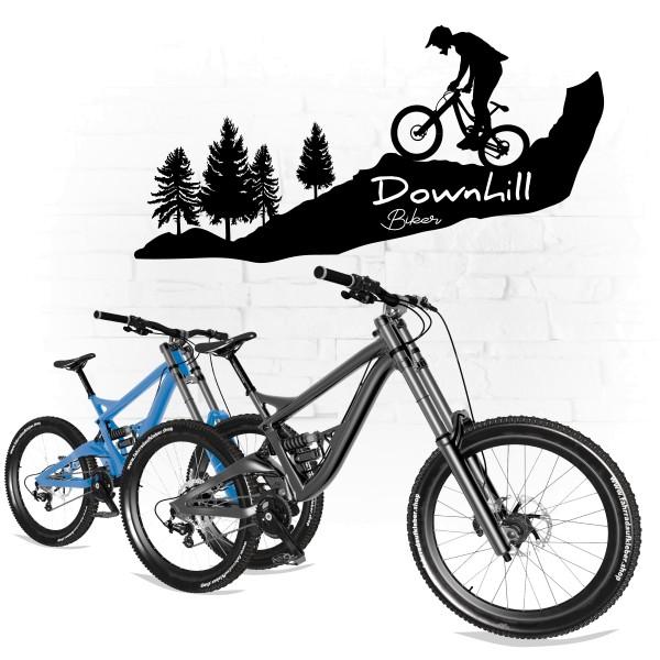 Downhill Biker Wall Art