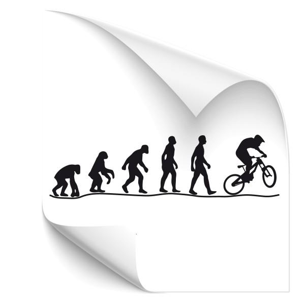 Evolution Downhill Wandsticker